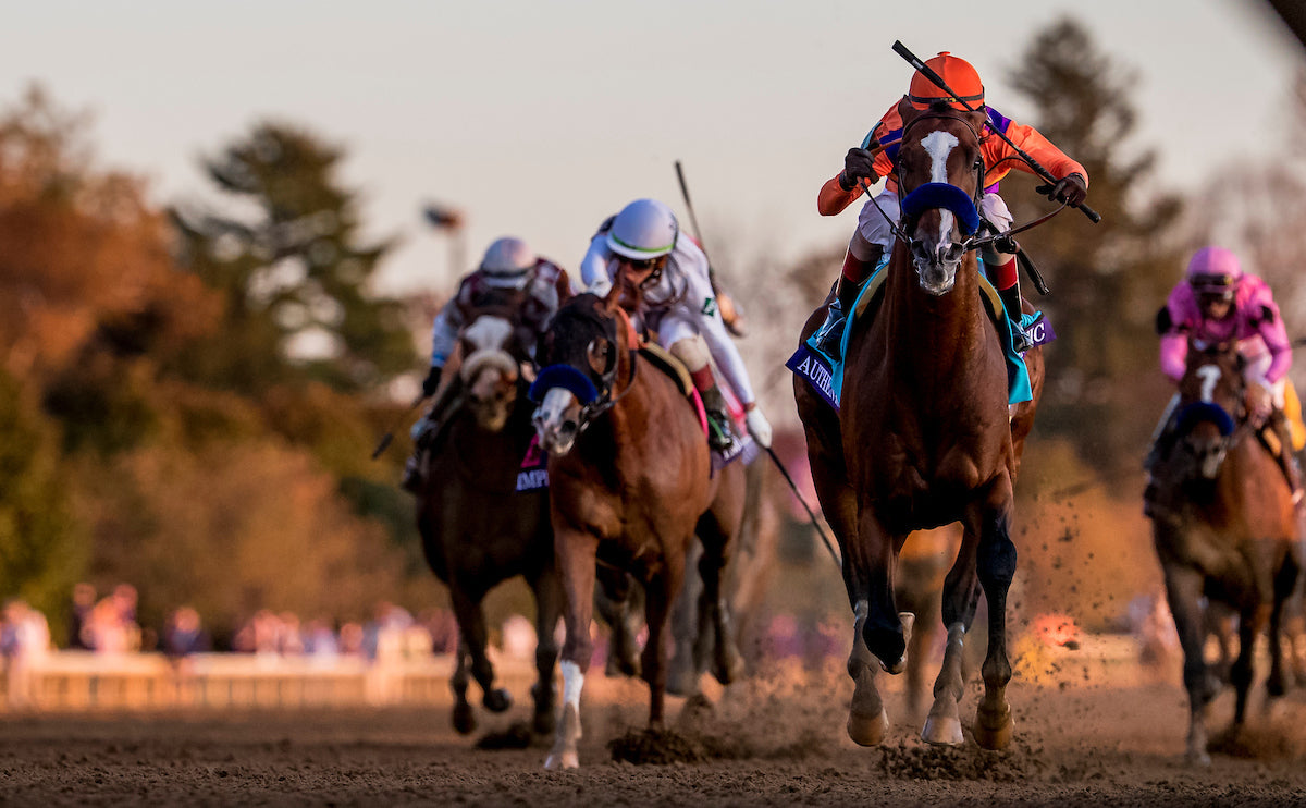 Breeders' Cup 2020 Highlights & Scores!