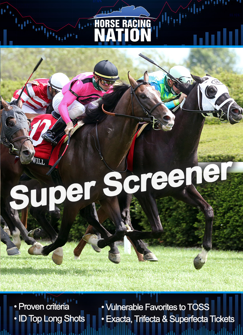 Super Screener subscription - Annual
