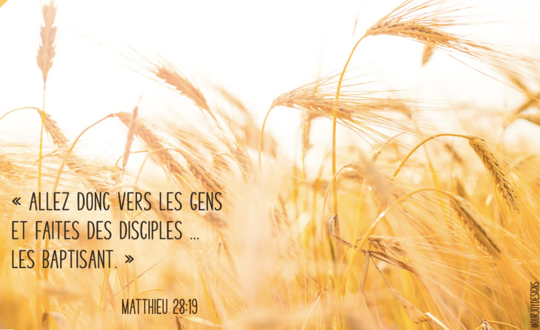 FRENCH 2020 Yeartext - Matthieu 28:19-Zoom Background-Our Joy Designs