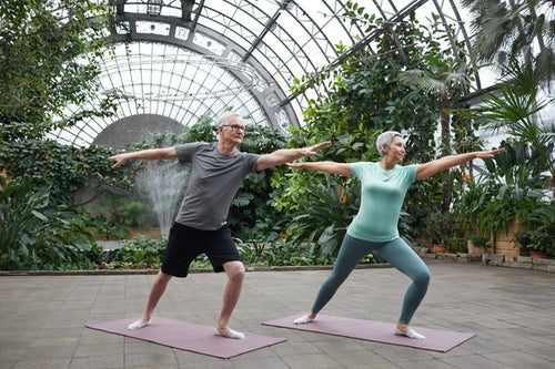 Seniors staying fit and active