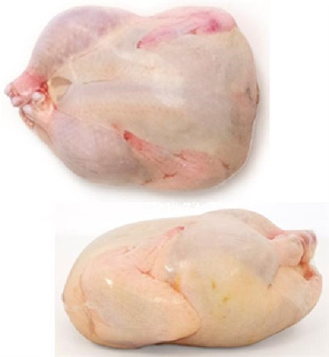 "48 pack of 11""x18"" Poultry Shrink Bags Chicken Freezer"