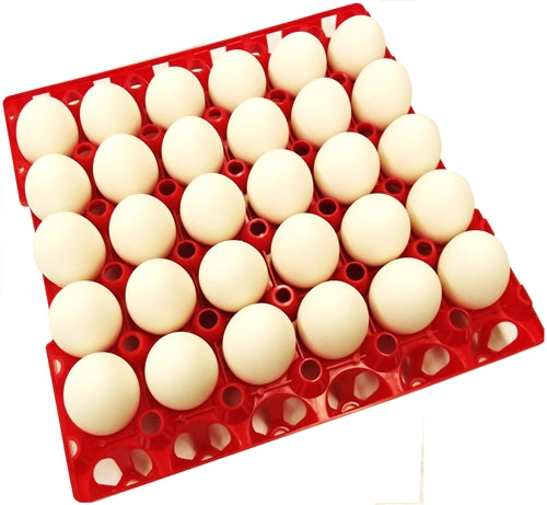 24 Pack of Rite Farm Products 30 Chicken Egg Poly Trays