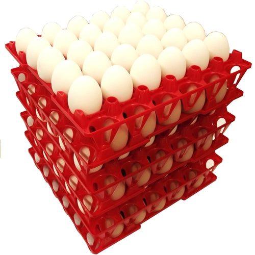 48 Pack of Rite Farm Products 30 Chicken Egg Poly Trays