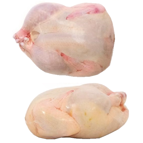 "48 pack of 5""x9"" Quail Grouse Shrink Bags Poultry Freezer"