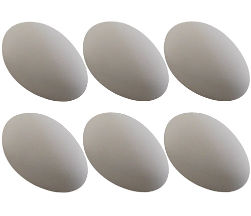 6 Pack White ceramic dummy Goose Duck size eggs