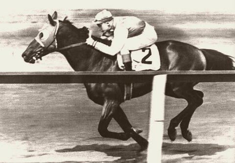 Seabiscuit New York 1937