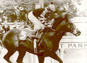 Seattle Slew Winning Triple Crown 1977