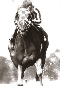 Secretariat Stretch Run 1973