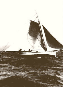 San Francisco Bay Yacht Fleetwing 1880