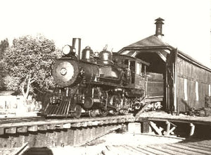 Virginia & Truckee Railroad Reno, Nevada 1900