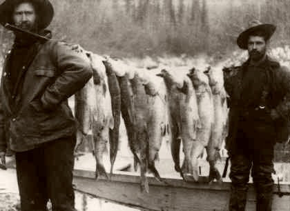 Alaska Morning Catch 1890