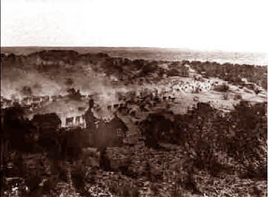 Texas (Lubbock) Cattle Drive 1900