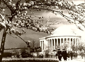 Washington D.C. The Jefferson Memorial 1944