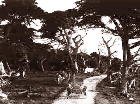 Pebble Beach Seventeen Mile Drive (Car On Path) 1910