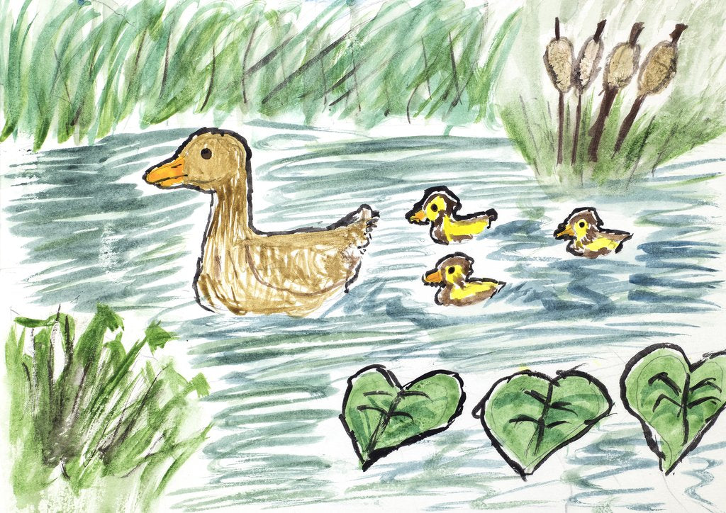 Mother Duck Giclee Print
