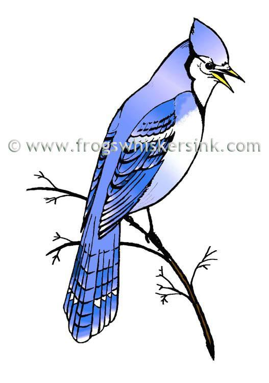 Frog's Whiskers Ink Stamps - Blue jay on a Branch