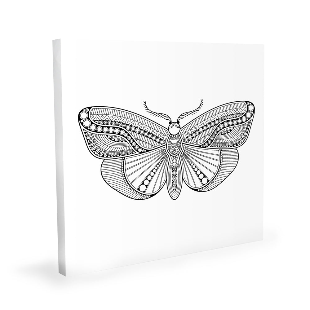 Coloring Canvas - Butterfly