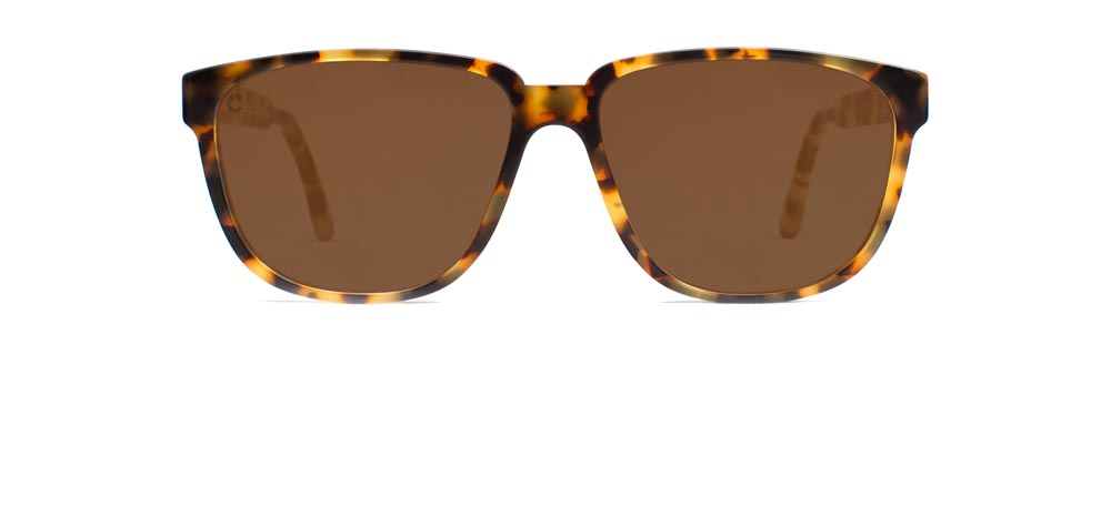 Tortoise Acetate Sunglasses made in San Francisco, California by Capital Eyewear.