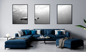 """Blue Happiness"" Black & White Triptych"