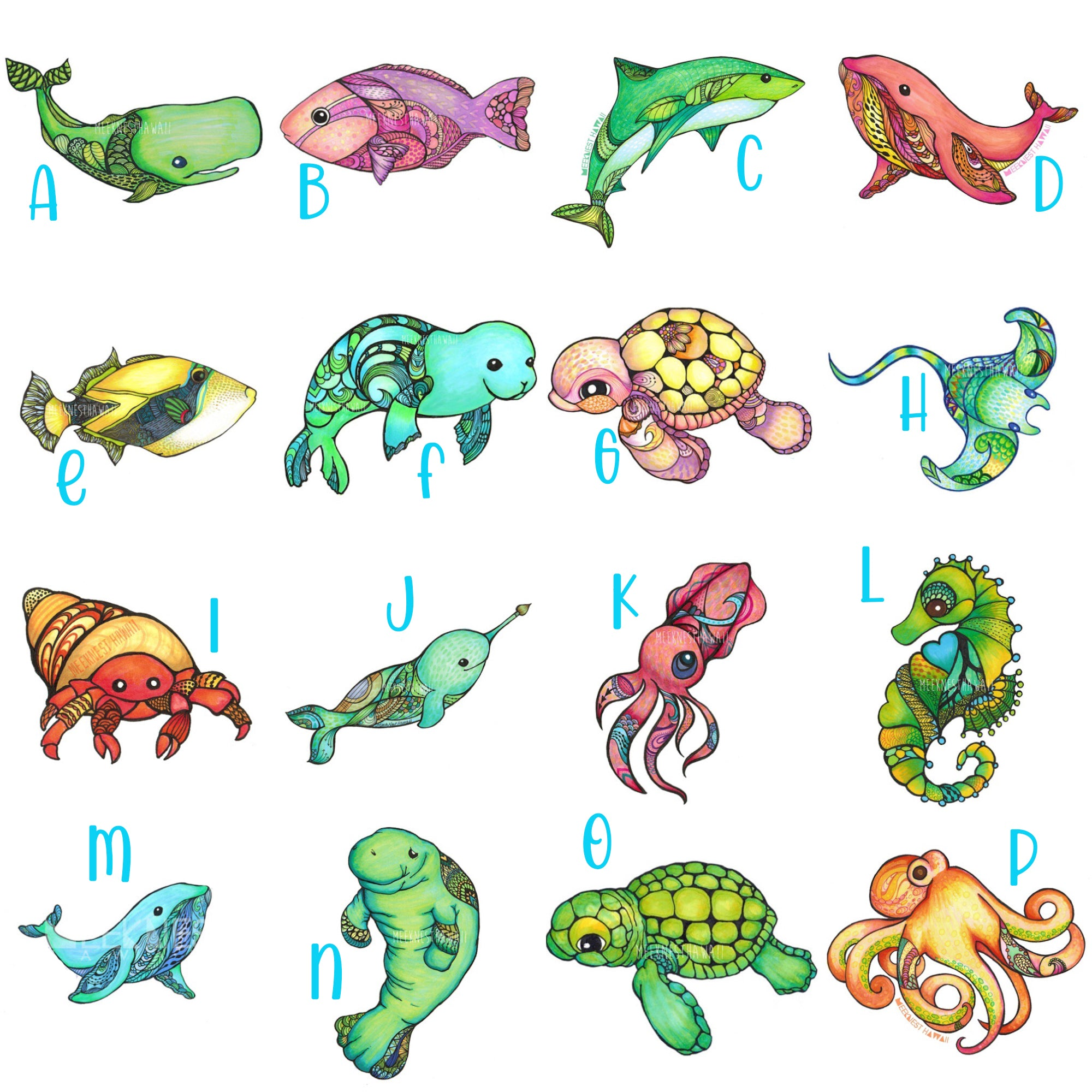 Sea Animal Collection
