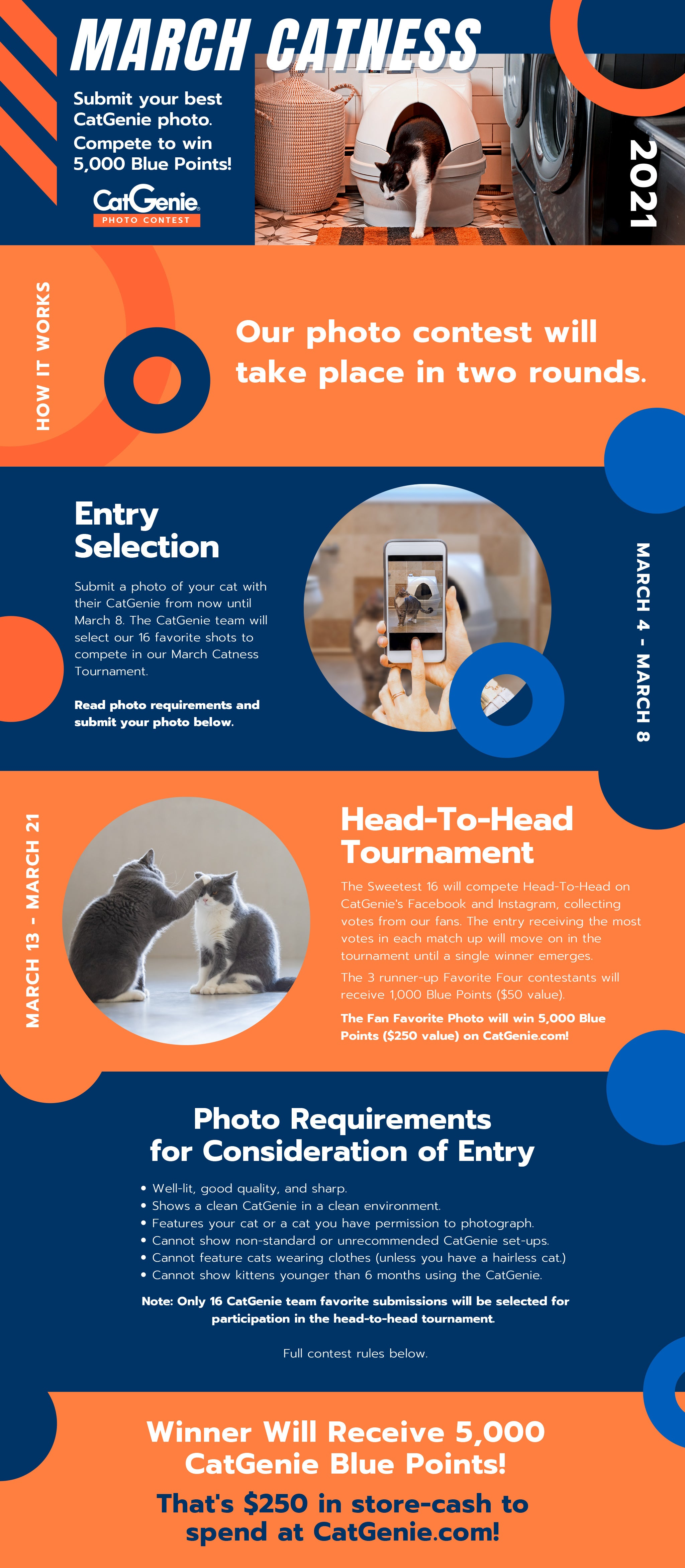 March Catness Photo Contest