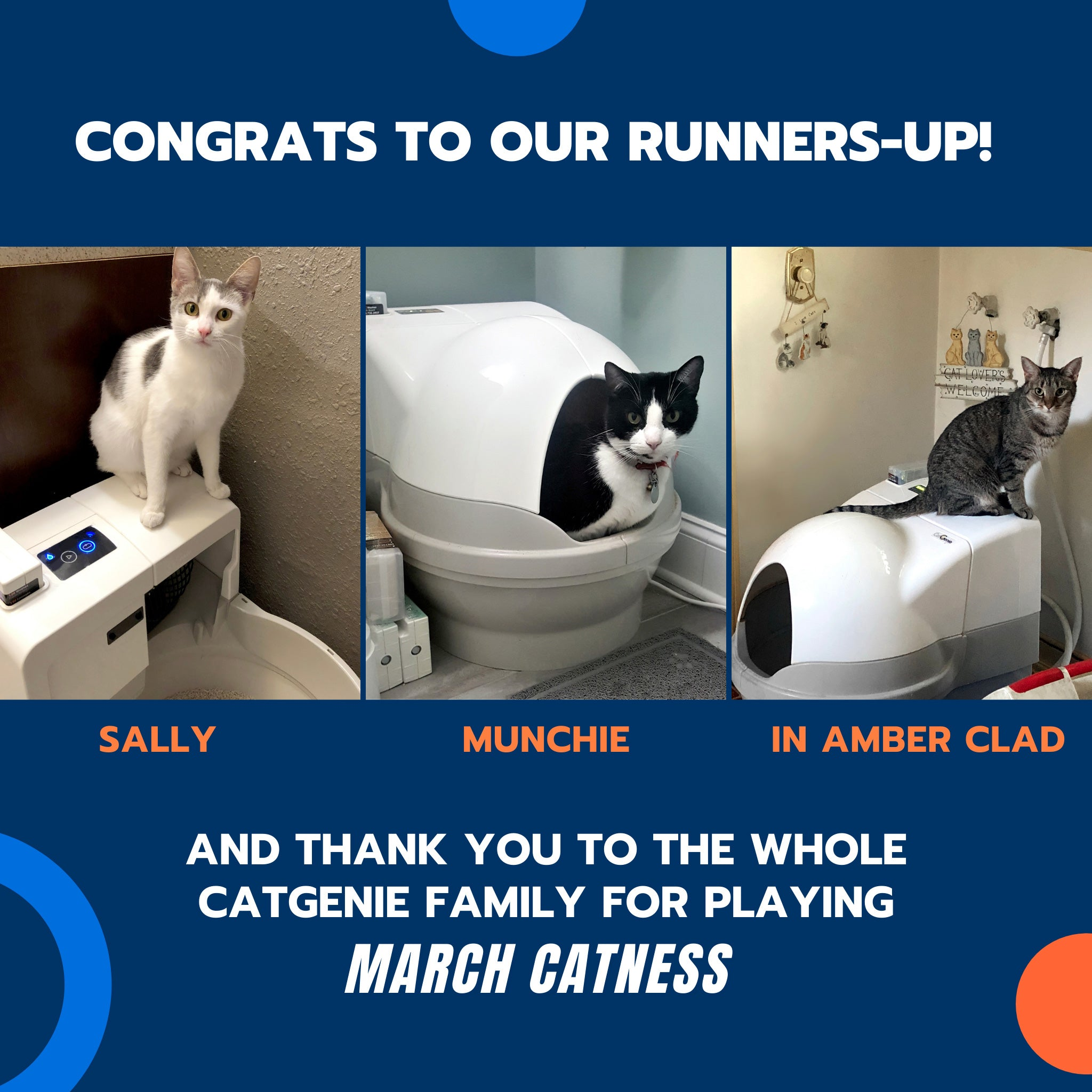 CONGratS to our runners-up! AND THANK YOU TO THE WHOLE CATGENIE FAMILY FOR PLAYING March Catness.