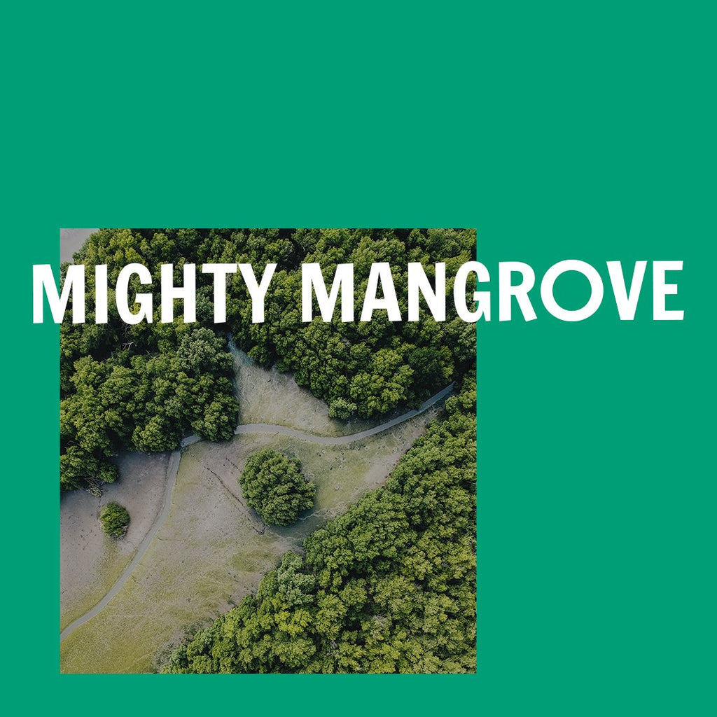 Mighty Mangrove - aerial view