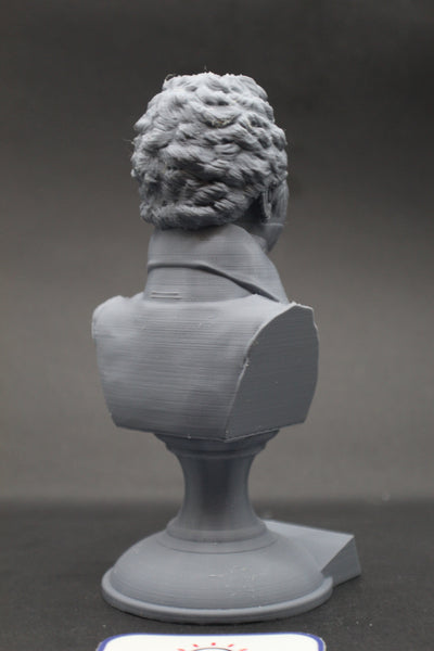 Thomas Young Famous British Physicist, Mathematician, and Mechanical Engineer Sculpture Bust on Pedestal