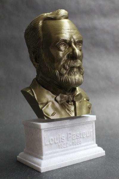 Louis Pasteur French Biologist, Microbiologist, and Chemist Sculpture Bust on Box Plinth