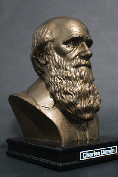 Charles Darwin, Famous English Naturalist, Geologist, and Biologist, Premium Sculpture Bust