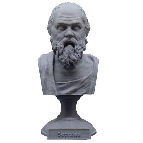 Socrates Greek Philosopher Sculpture Bust on Pedestal