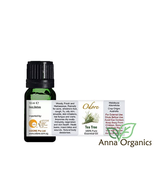 Essential Oil [香精油] 10ml – Tea Tree