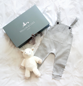 Dungaree and Archie Starter Set
