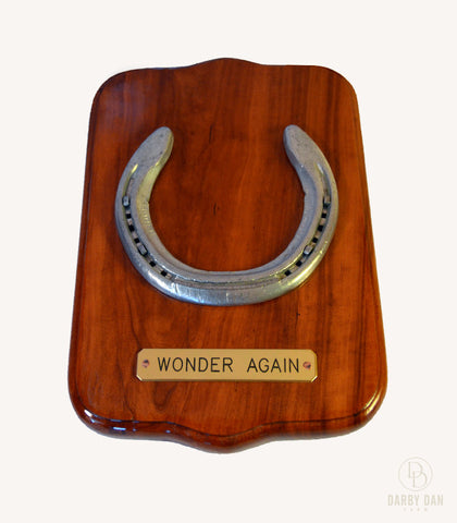 Wonder Again - Mounted Shoe