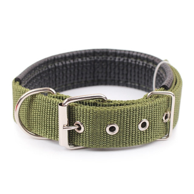 Solid Colored Collar