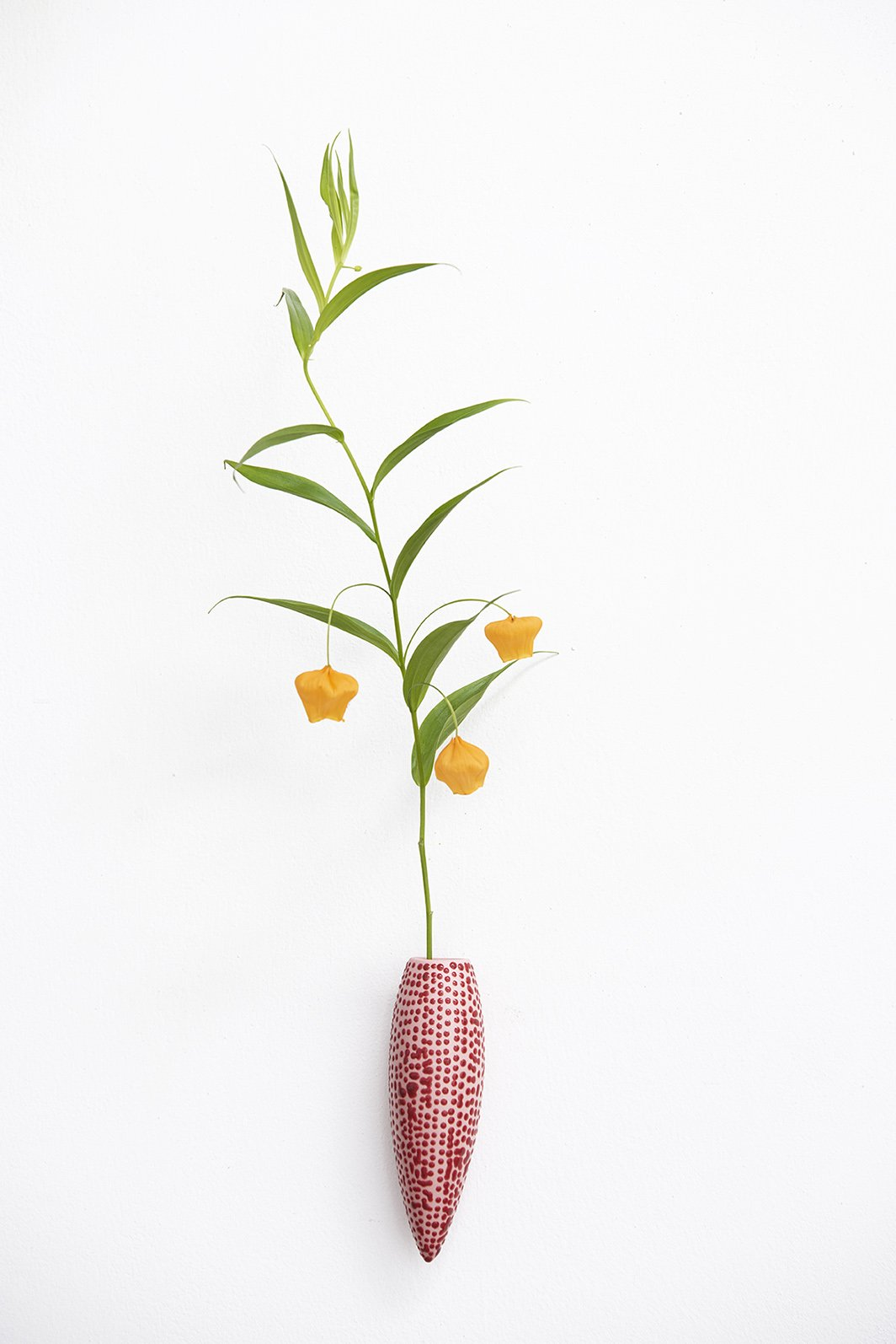 Wall hanging vase | Pink with red stars
