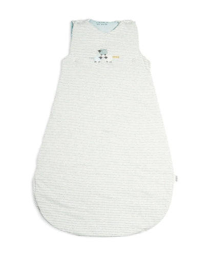 Mamas & Papas Dreampod Sleep Bags & Swaddling Welcome to the World Striped Dreampod - Blue Striped