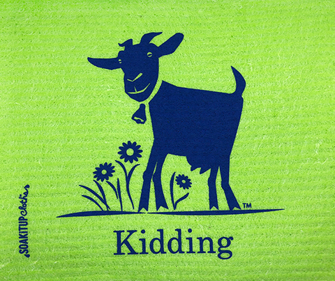 Kidding Goat