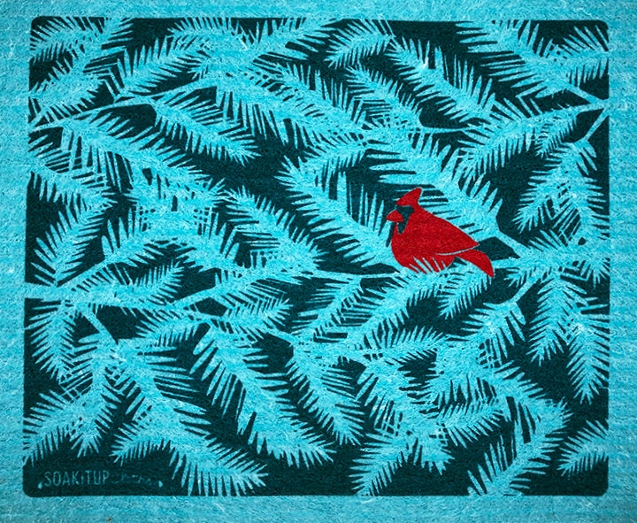 Red Cardinal Evergreen Branches Teal
