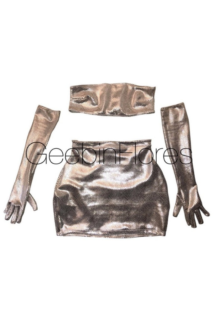 Metallic Trina Tube Top Set
