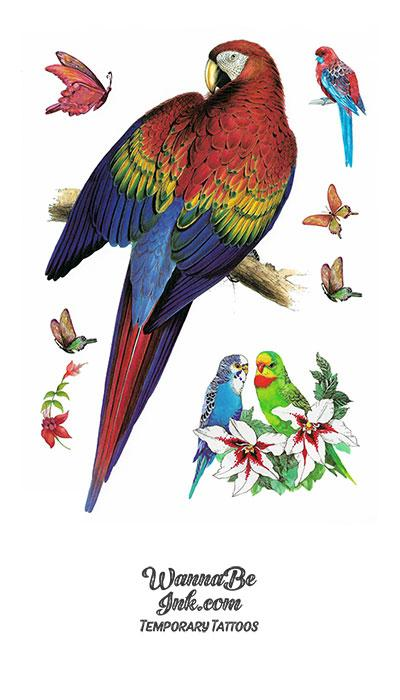 Lots of Parrots Best Temporary Tattoos