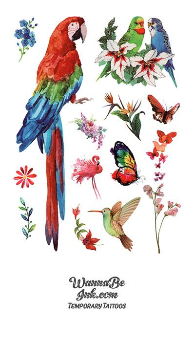 Red Parrot Macaw Hummingbird and Flower Blossoms
