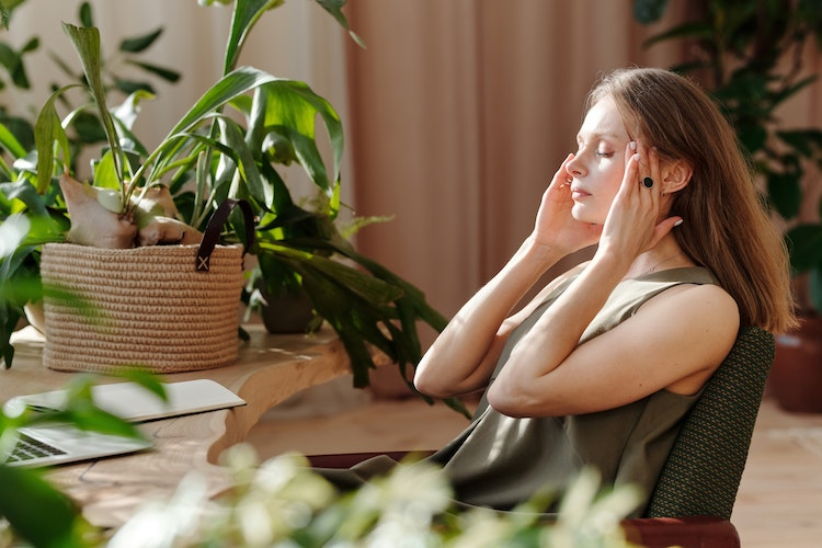 4 Herbs that help with stress