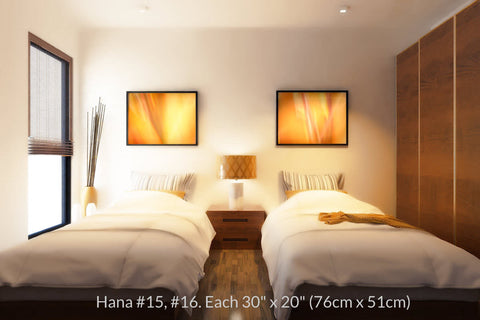 Hana #15 and #16 at 30in. x 20in. each by Maui Hawaii artist Shane Robinson