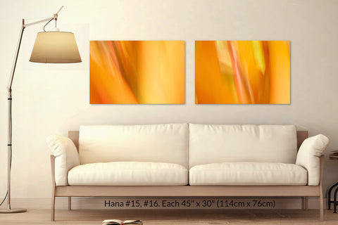 Hana #15 and #16 at 45in. x 30in. each by Maui Hawaii artist Shane Robinson