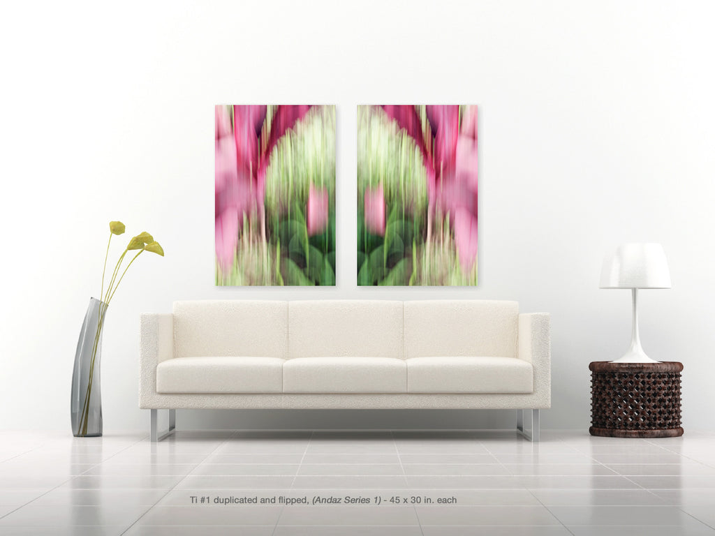 Ti #1 mirrored from the Andaz Series 1 by Shane Robinson in pinks and greens