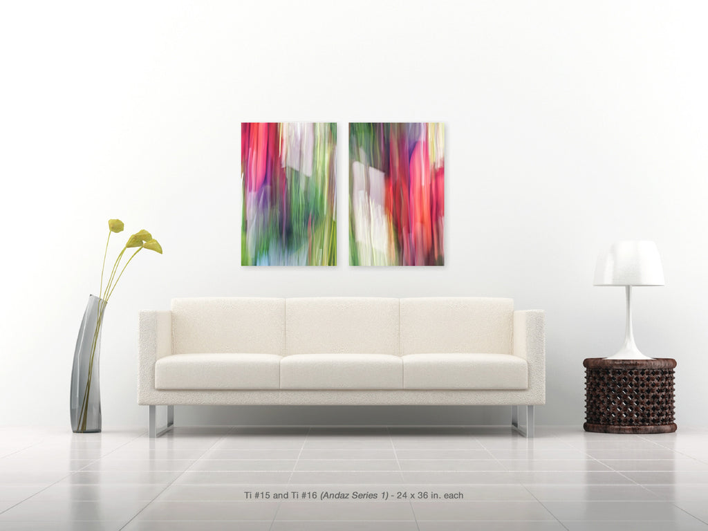 Ti #15 and #16 Diptych from the Andaz Series 1 by Shane Robinson, with modern white sofa