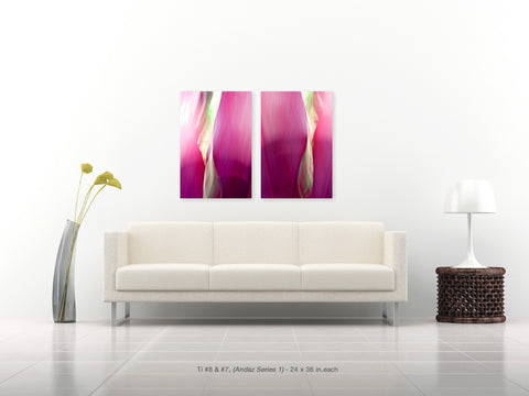 Ti #8 and #7 Diptych from the Andaz Series 1 by Shane Robinson with modern white sofa, 24x36 each