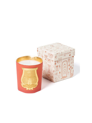 CHRISTMAS CANDLE AMON 270G
