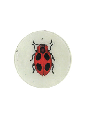 Big Dot Lady Bug 7inch Round